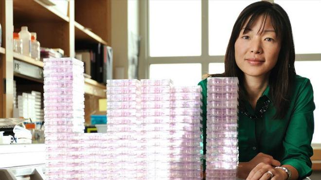 Akiko Iwasaki, profesora de Inmunobiología.