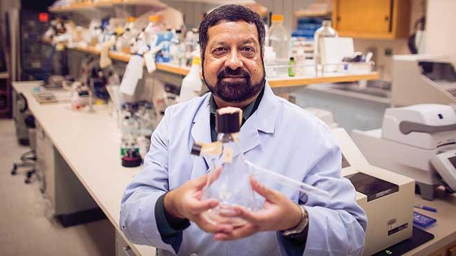 Ashok Chopra, profesor de Microbiolog�a e Inmunolog�a de la UTMB.
