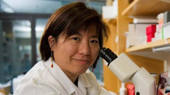 Catherine Wu, investigadora del Instituto del C�ncer Dana-Farber