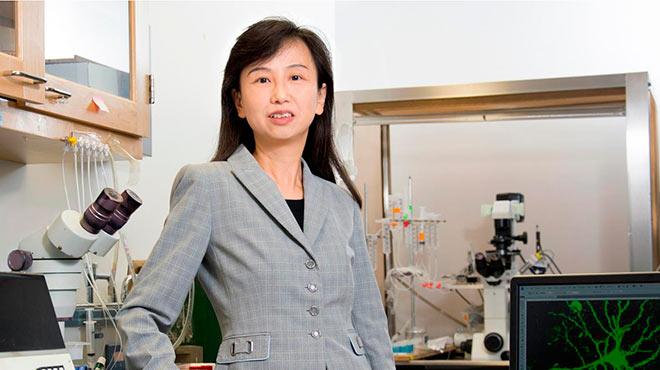Zhen Yan, investigadora de la Universidad de Buffalo.