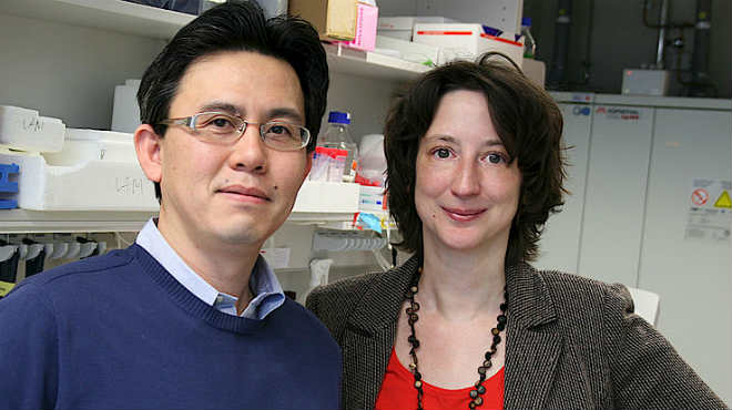 Mikito Takefuji  y Nina Wettschureck, investigadores.