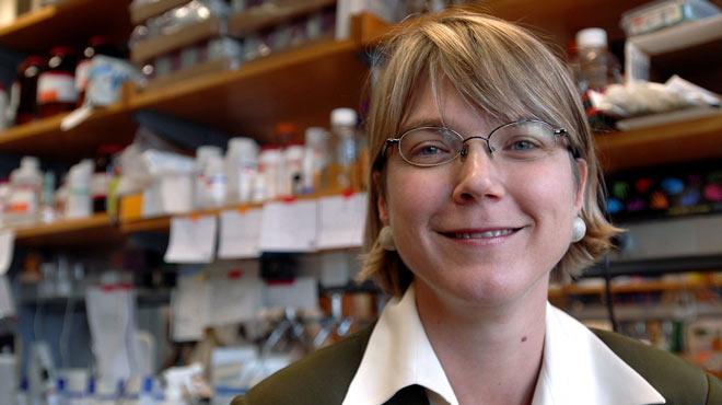 Linda Griffith, investigadora del MIT.