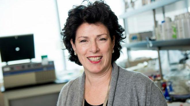 Susan Molineaux, CEO de Calithera Biosciences.